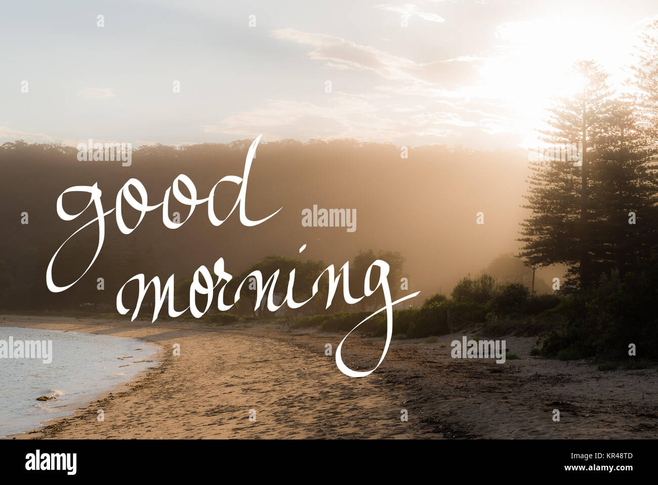 Good Morning Greeting Stock Photos Good Morning Greeting Stock