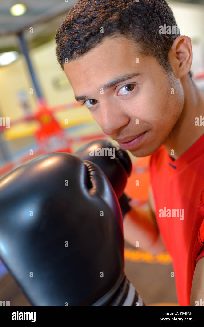 a young boxer - Stock Image