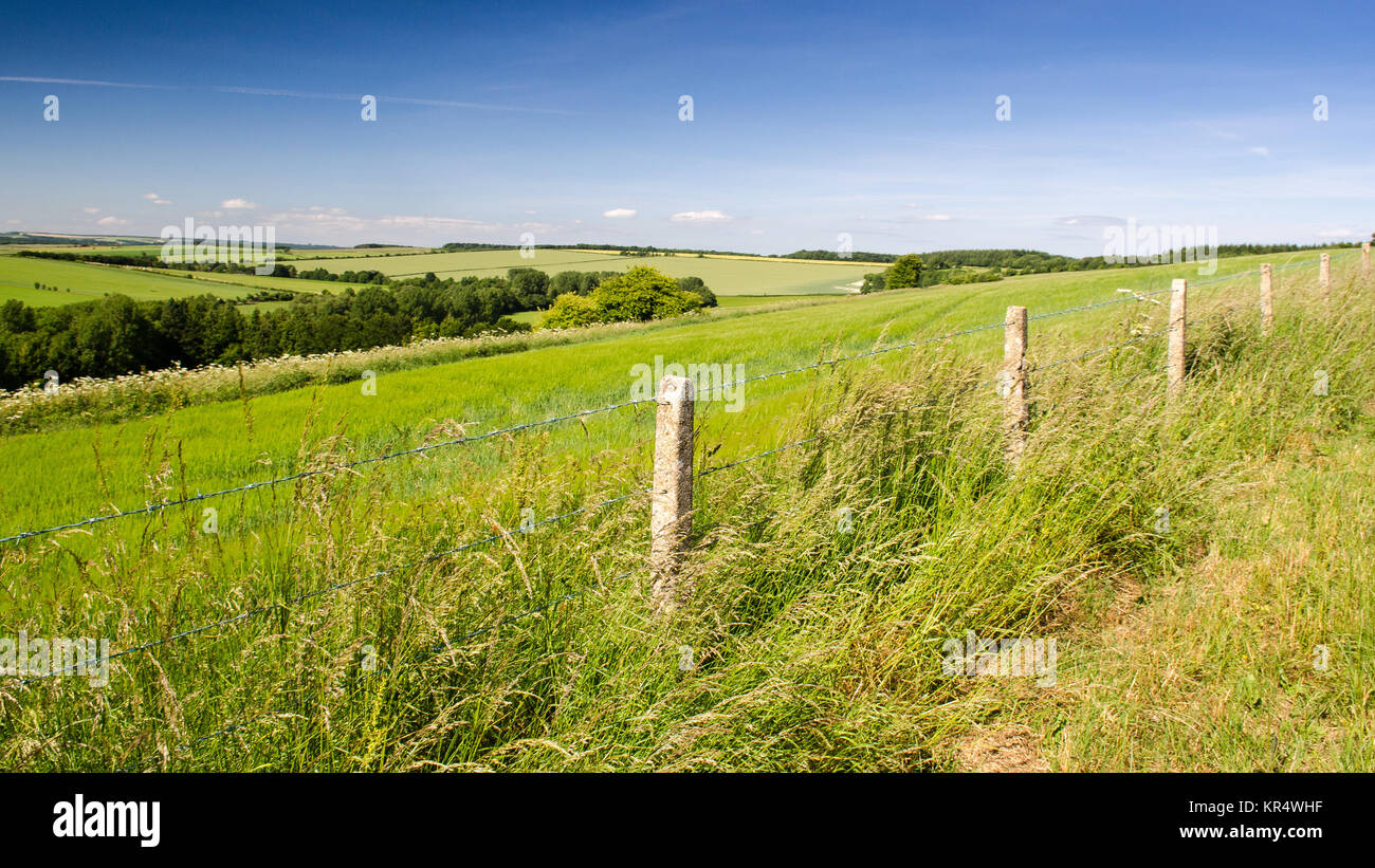 Agricultural fields and chalk downland around the sparsely populated Tarrant Valley in England's Dorset Downs - Stock Image