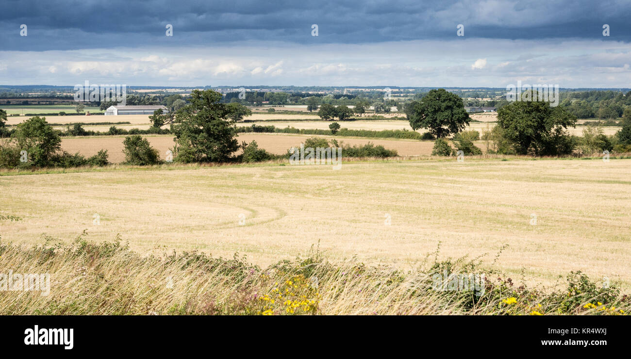 Fields of crops and pasture are interspersed with copice woodland in the patchwork agricultural landscape of England's - Stock Image