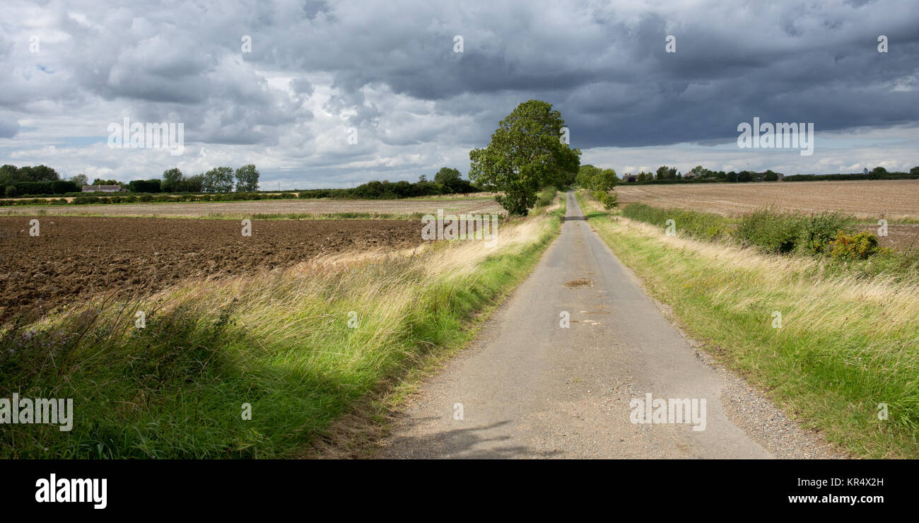 A narrow country lane runs through fields and farmland at Great Gidding, on the border of Huntingdonshire and Northamptonshire, - Stock Image