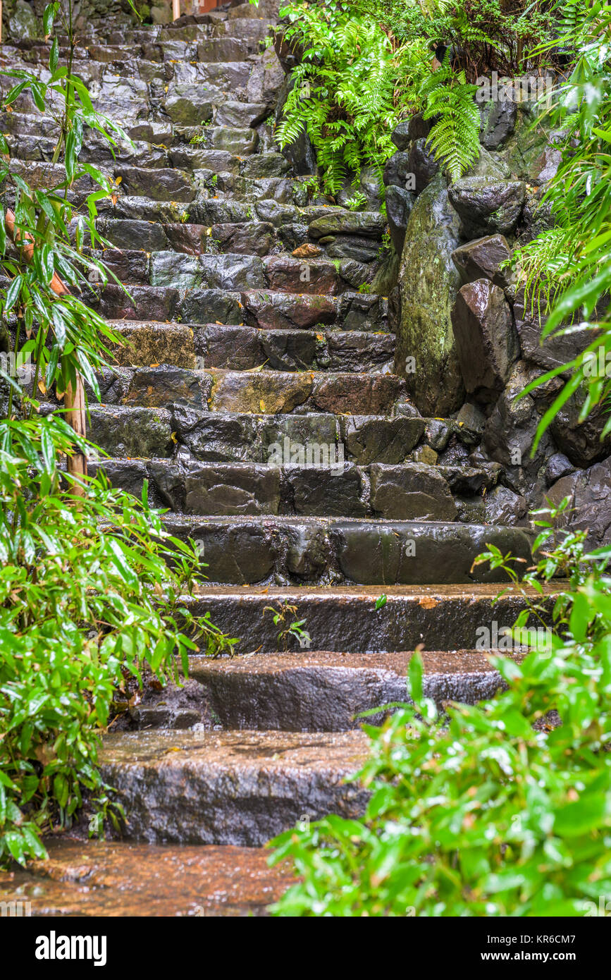 Wet Stone Steps in kyoto, Japan. - Stock Image