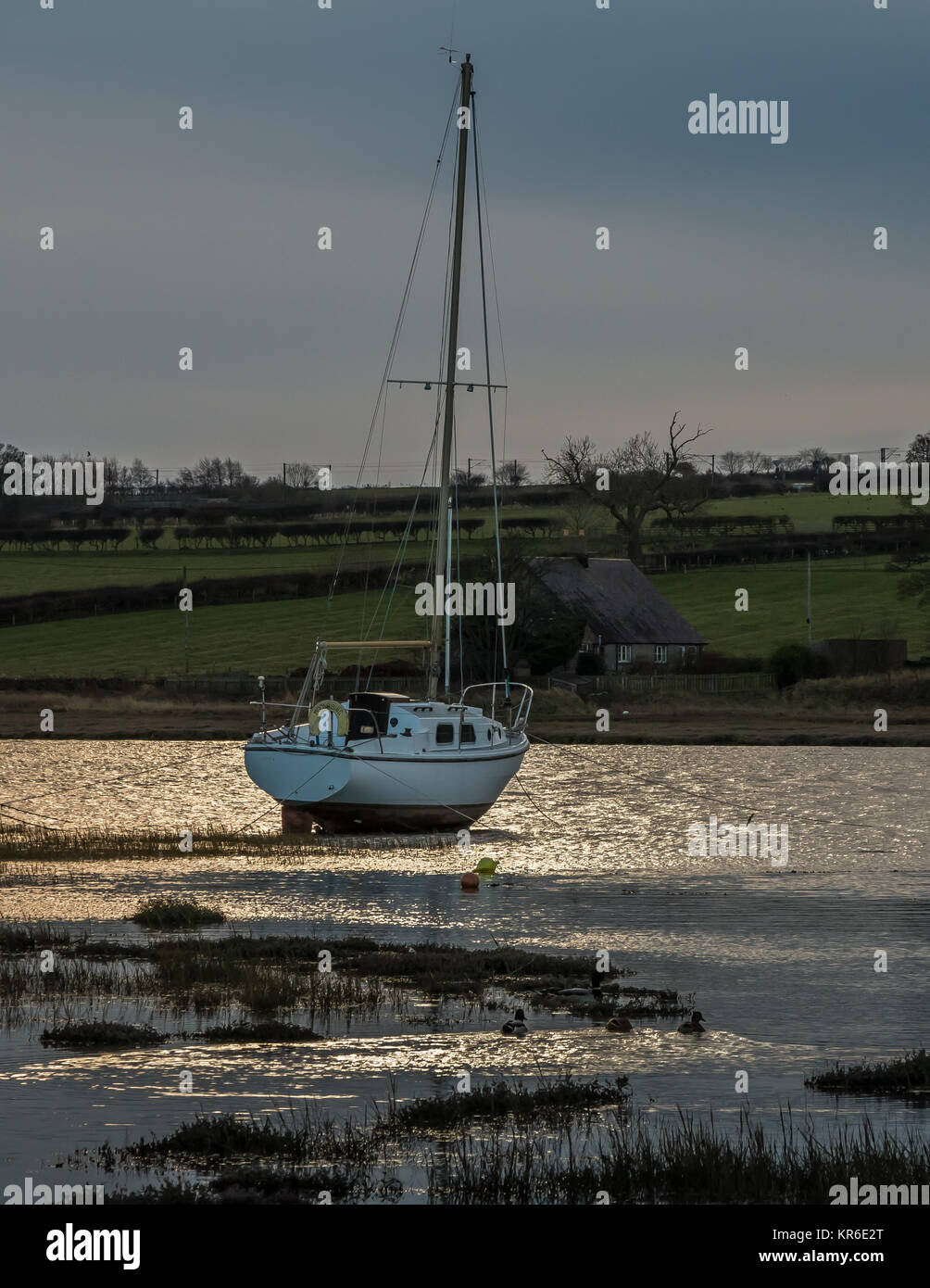 A single yacht moored in Alnmouth Harbour, Northumberland, UK, in late afternoon winter sunshine with a dark sky - Stock Image