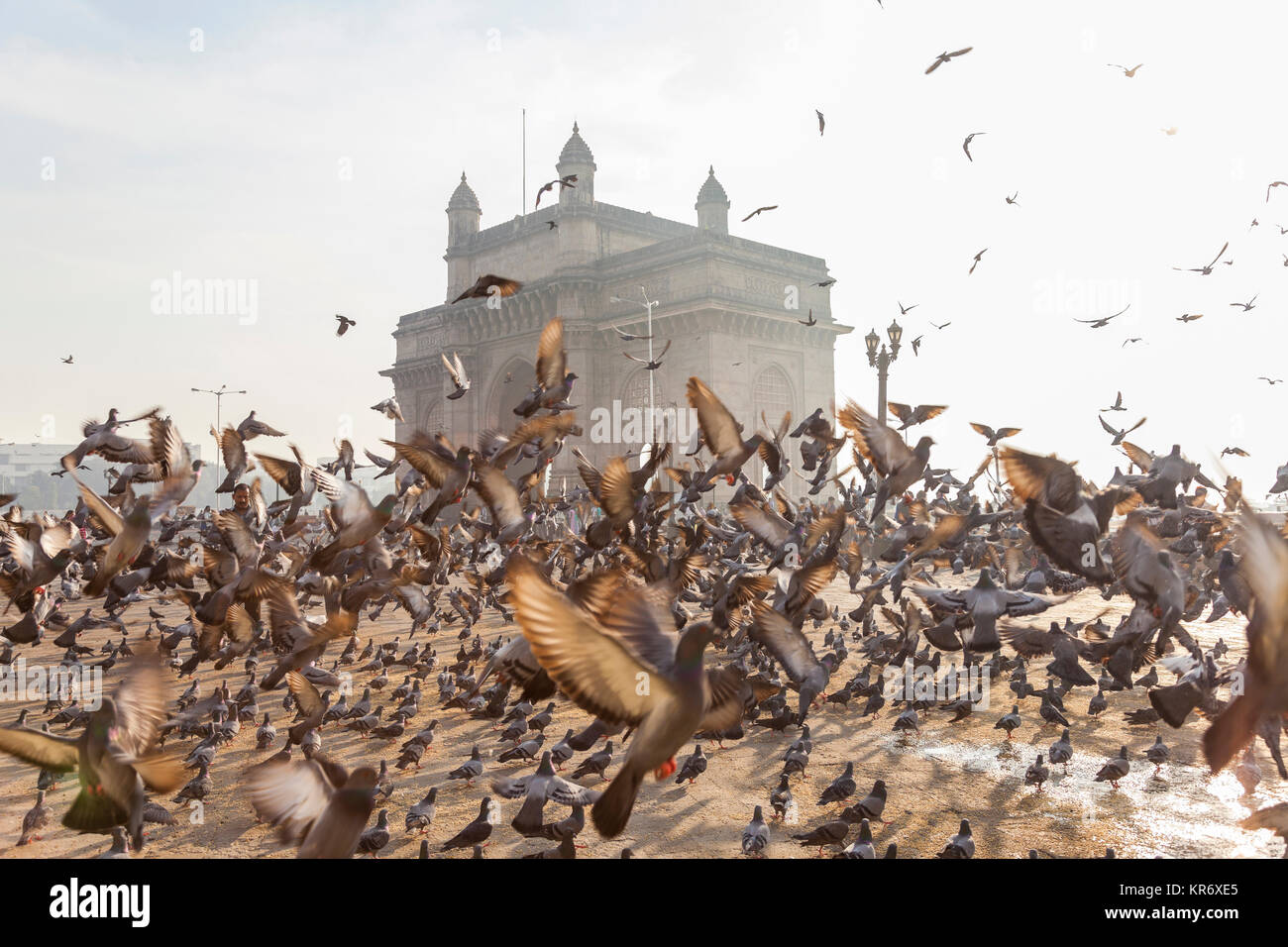 Large flock of pigeons on open space with arch monument in background. - Stock Image