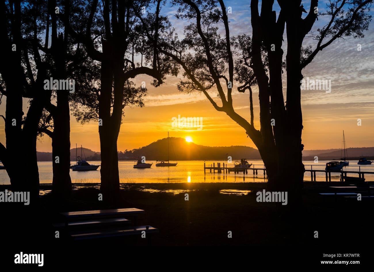 Australia, New South Wales, Central Coast, Brisbane Water, Cooch Park, Koolewang, sunrise over Mount Pleasant Brisbane - Stock Image