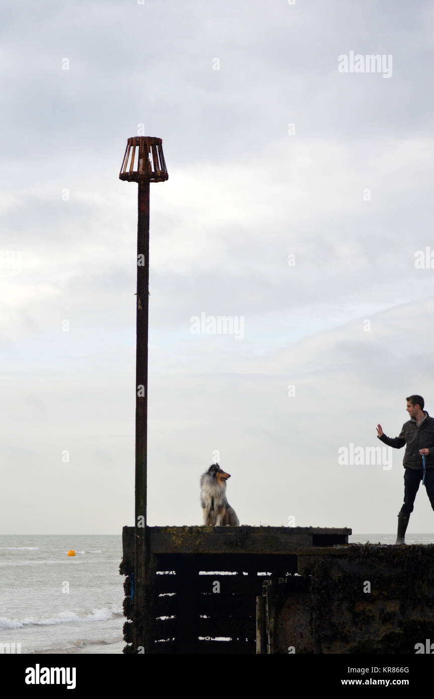 Man commanding dog to sit on pier at Worthing, UK. - Stock Image