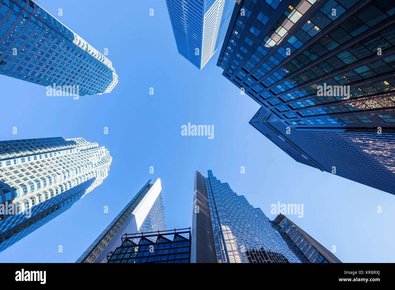 Canada, Ontario, Toronto, Skyscrapers seen from below - Stock Image