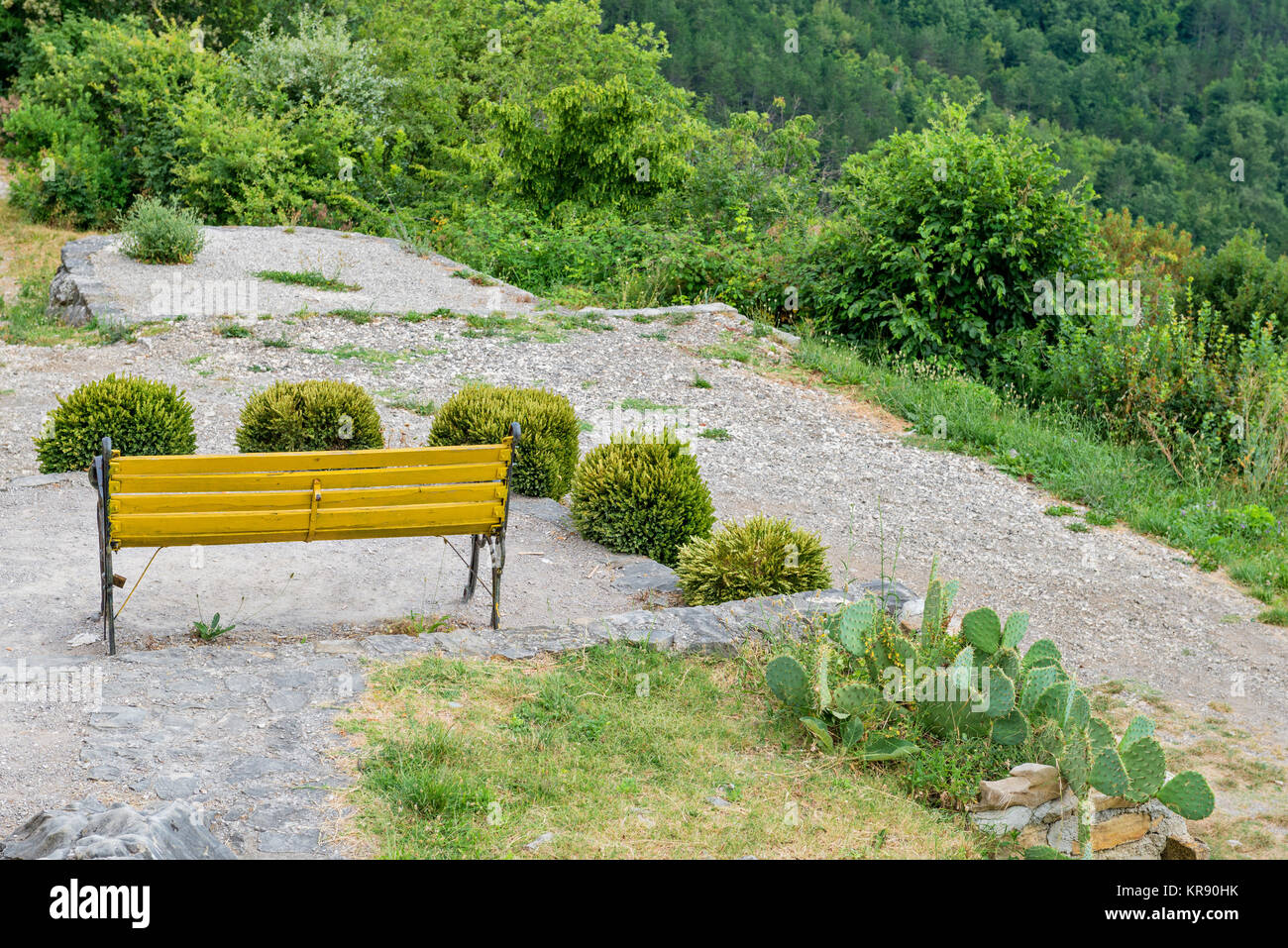 Bench With Beautiful Mountain Forest Scenery Stock Photo 169228463
