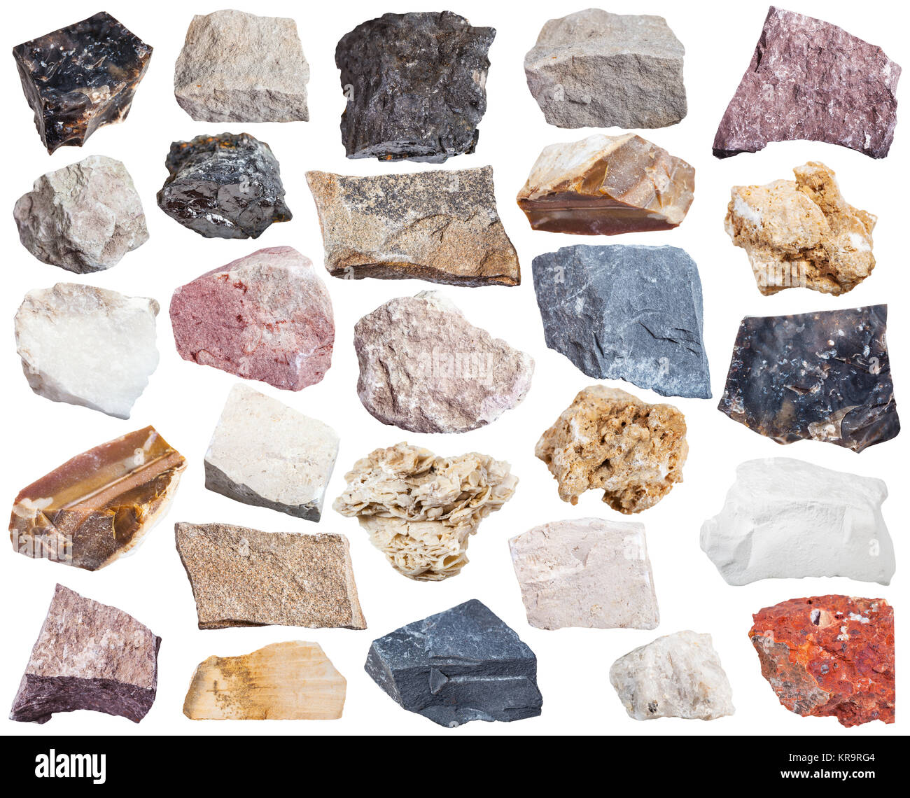 collection of sedimentary rock specimens - Stock Image