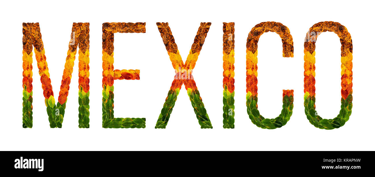 word mexico country is written with leaves on a white insulated background, a banner for printing, a creative developing - Stock Image