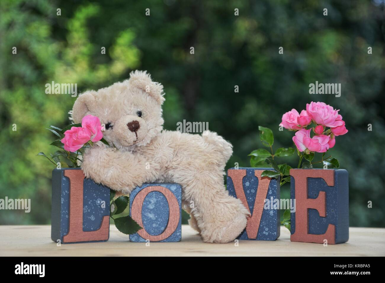 White teddy bear lies on love stones with pink roses stock photo white teddy bear lies on love stones with pink roses altavistaventures Images