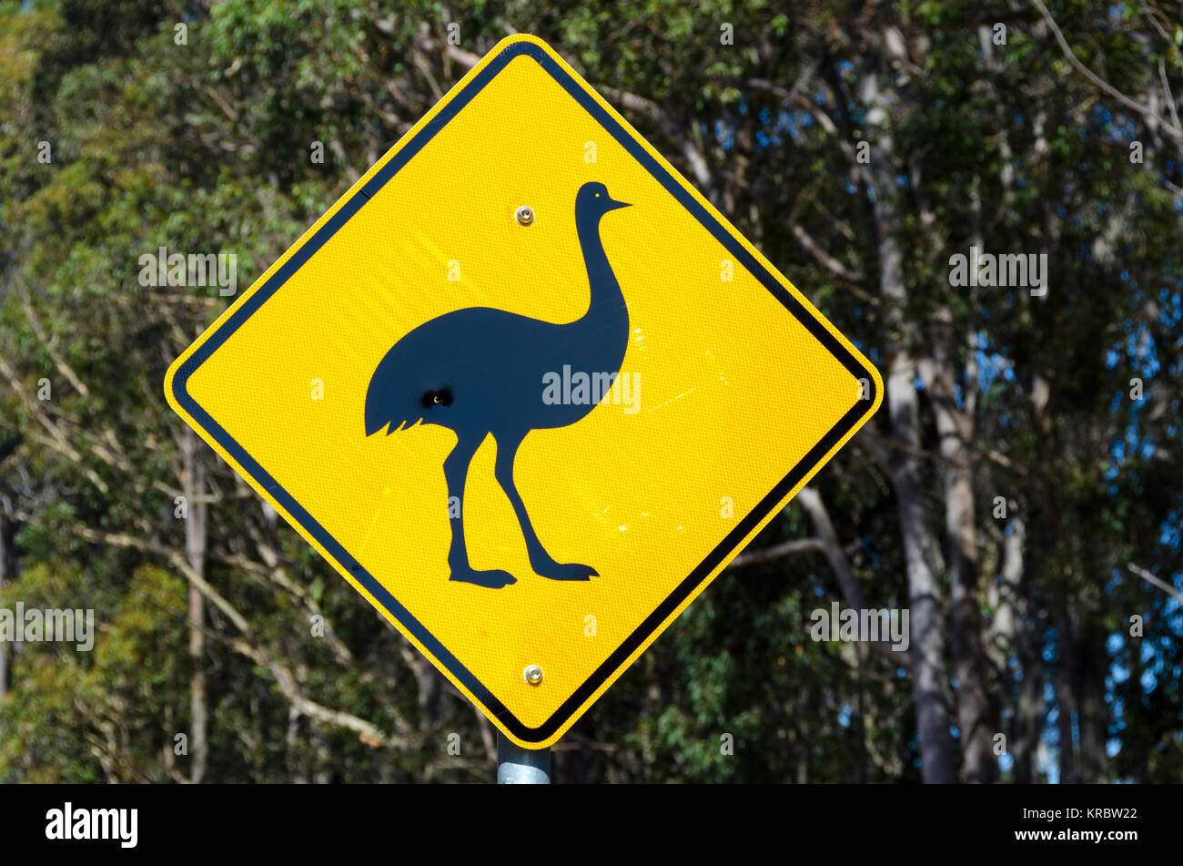 Emu road sign, Potato Point, New South Wales, Australia - Stock Image