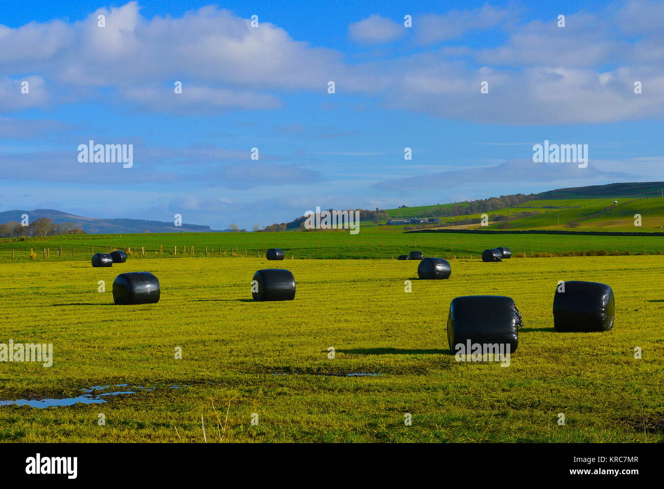 Fields on the Isle of Bute - Stock Image