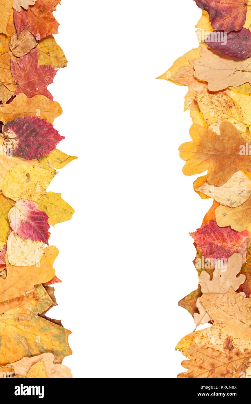 Leaf Frames Stock Photos & Leaf Frames Stock Images - Alamy