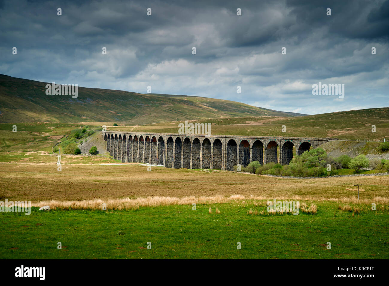 The Ribblehead Viaduct on the Settle-Carlisle railway line in the Yorkshire Dales National Park, England With Whernside - Stock Image