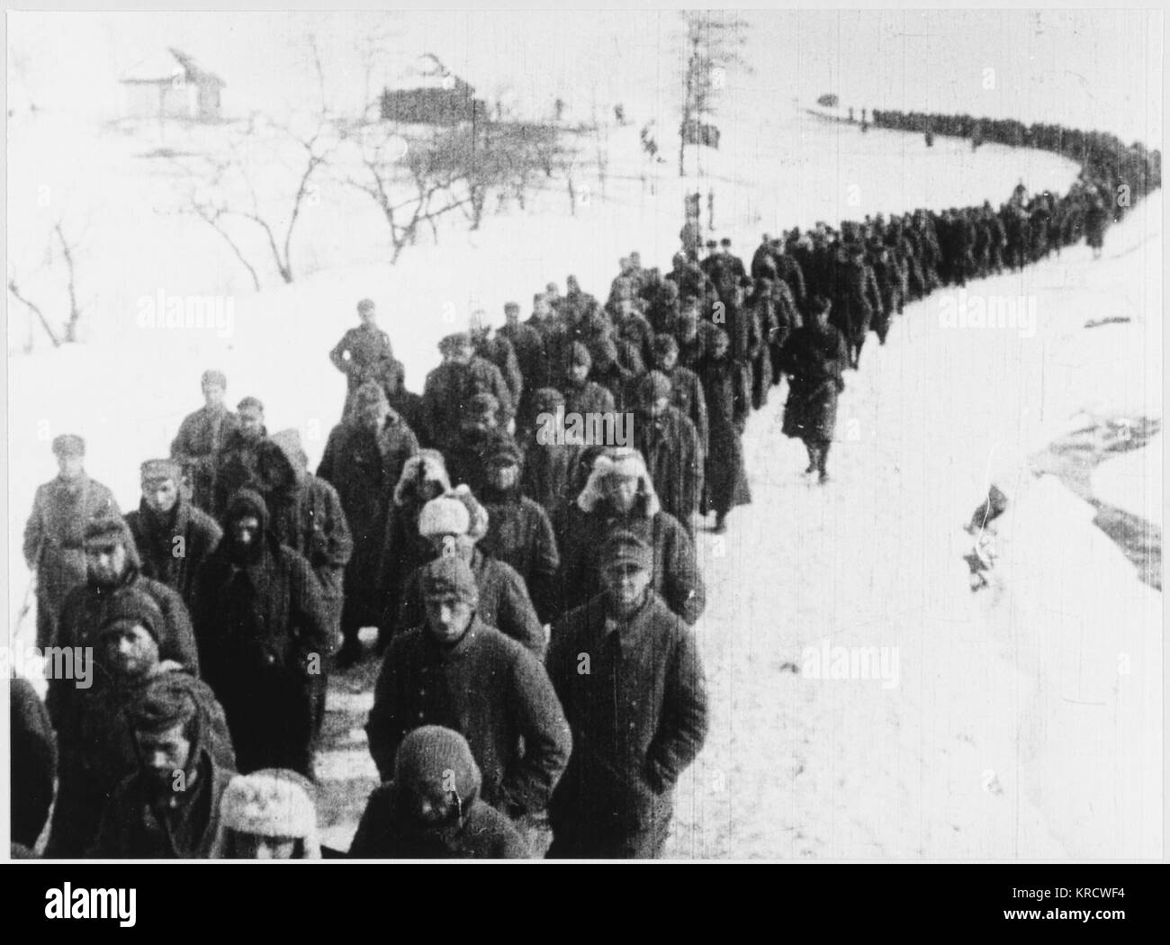 An enormous number of Germans were made prisoner after the surrender at Stalingrad : only a relatively small number - Stock Image