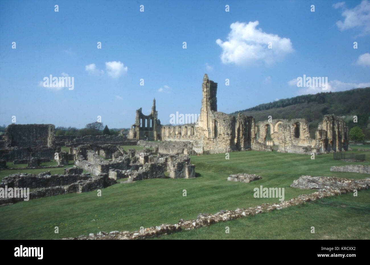 The ruins of Byland Abbey,  North Yorkshire, England.         Date: founded 1135 - Stock Image