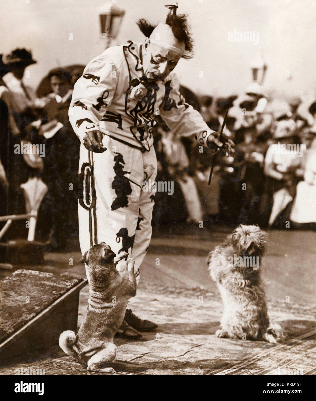 James Doughty of Brighton, at the time of this photograph the oldest clown in England, about to celebrate his 94th - Stock Image