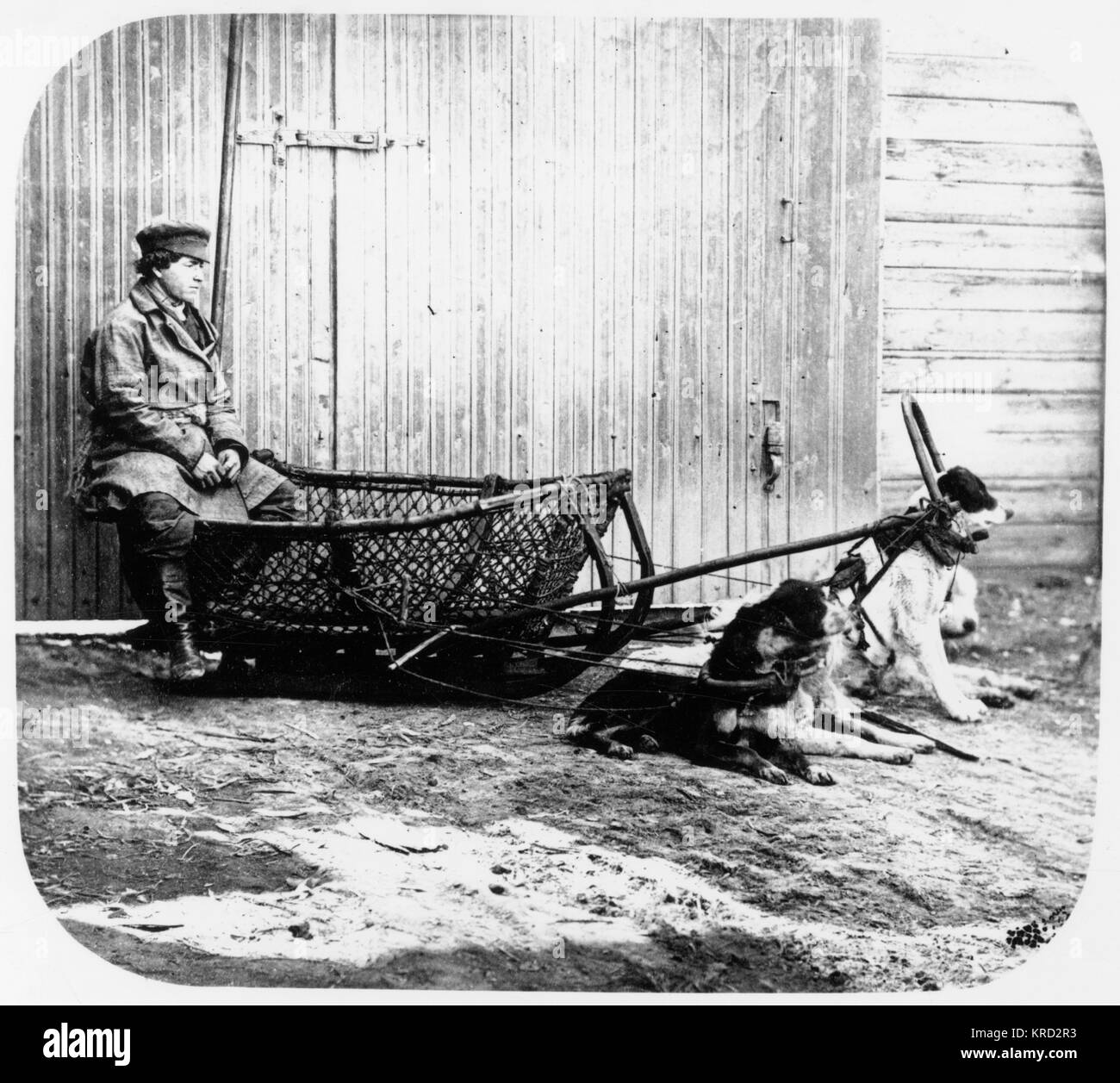 A fisher man sitting on a dog pulled sledge in Astrakhan a south west region of Russia.       Date: 1873 Stock Photo