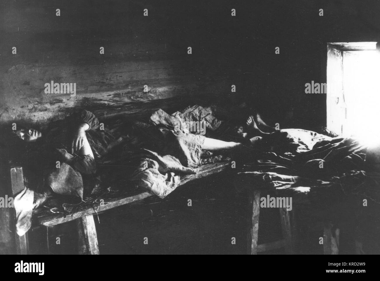 Bedridden Typhus sufferers in the Russian provence of Kniagin.       Date: 1891 - 1892 - Stock Image