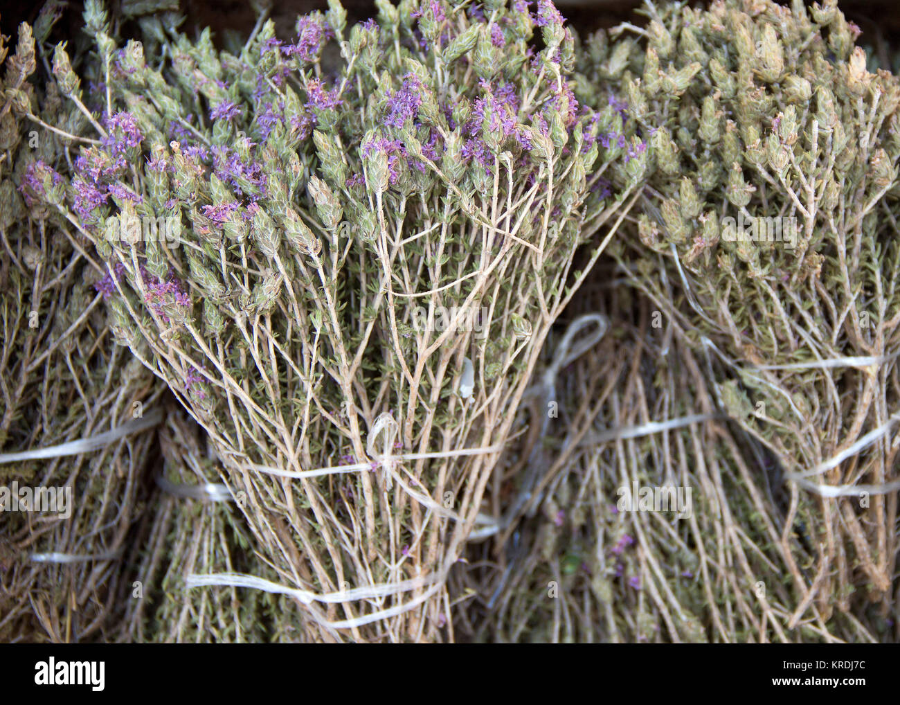 55d37571ef1b Wild thyme on the market Stock Photo  169330096 - Alamy