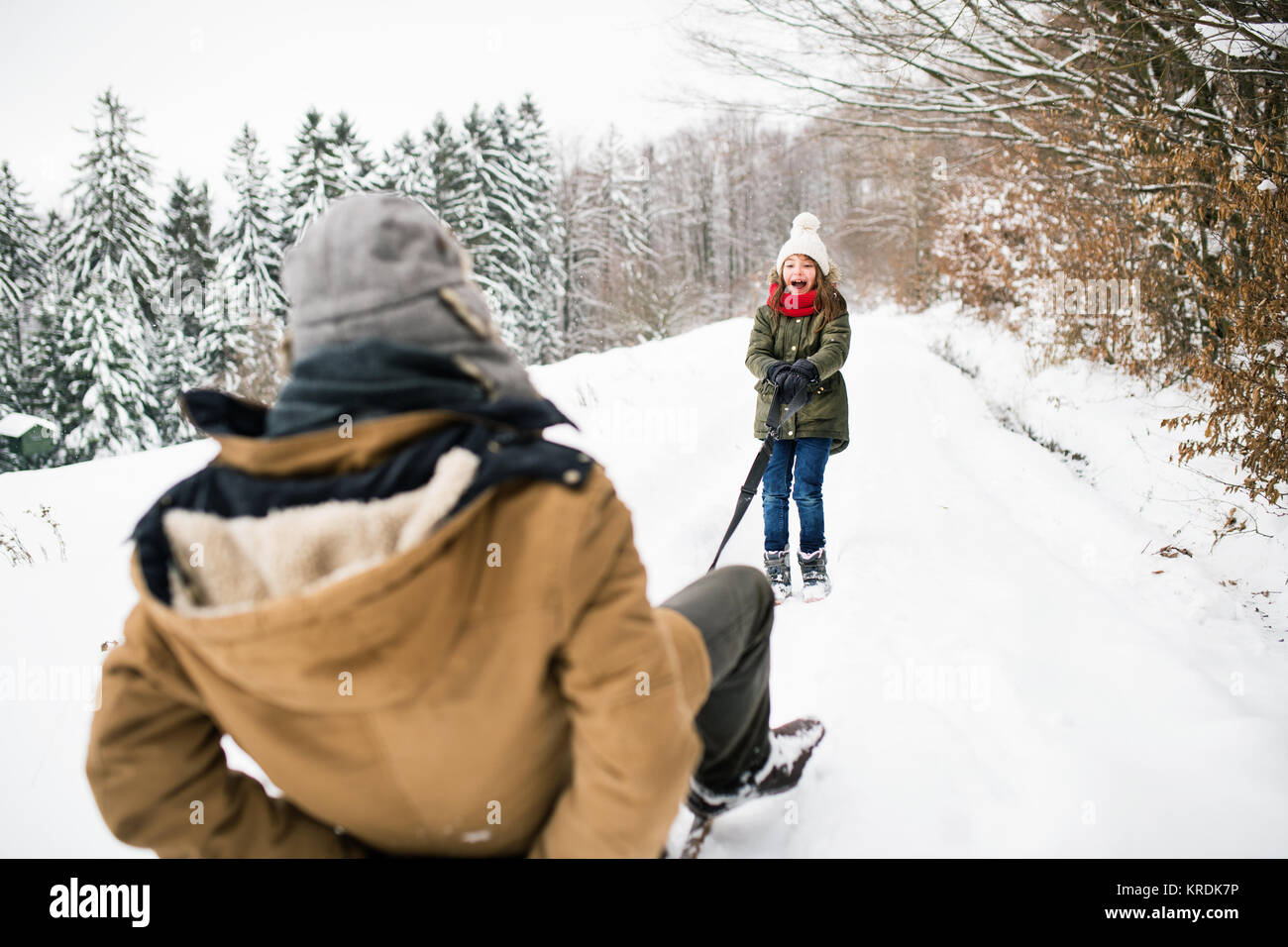 Grandfather and small girl sledging on a winter day. - Stock Image