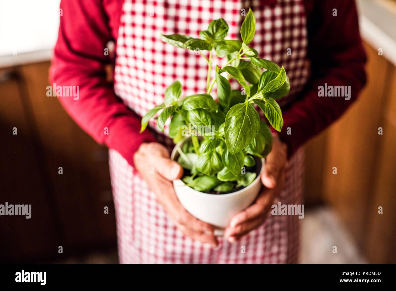 Senior man preparing food in the kitchen. - Stock Image