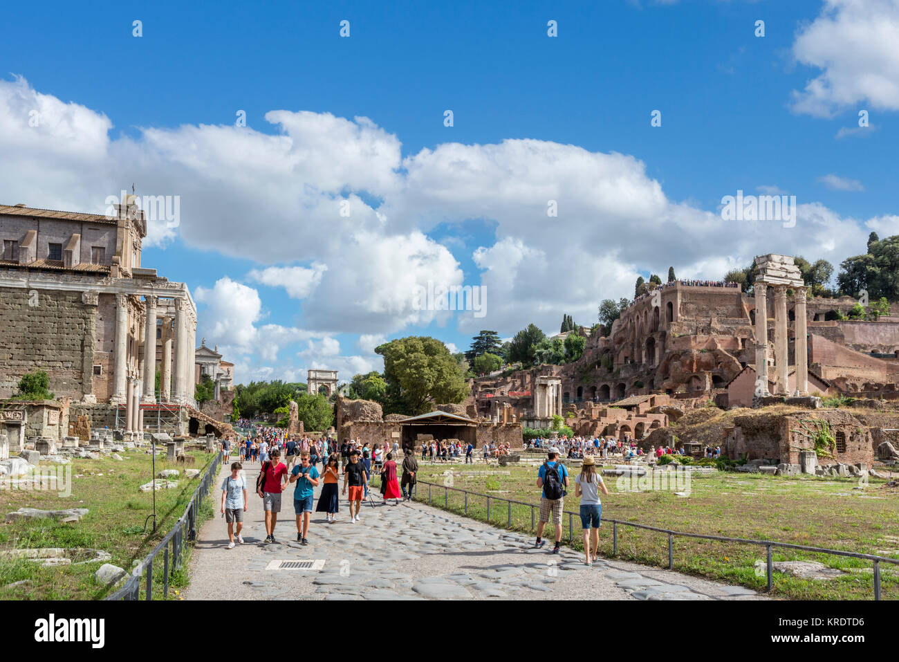 Rome, Forum. Via Sacra with the Temple of Antoninus and Faustina to the left and Palatine Hill to the right, Roman - Stock Image
