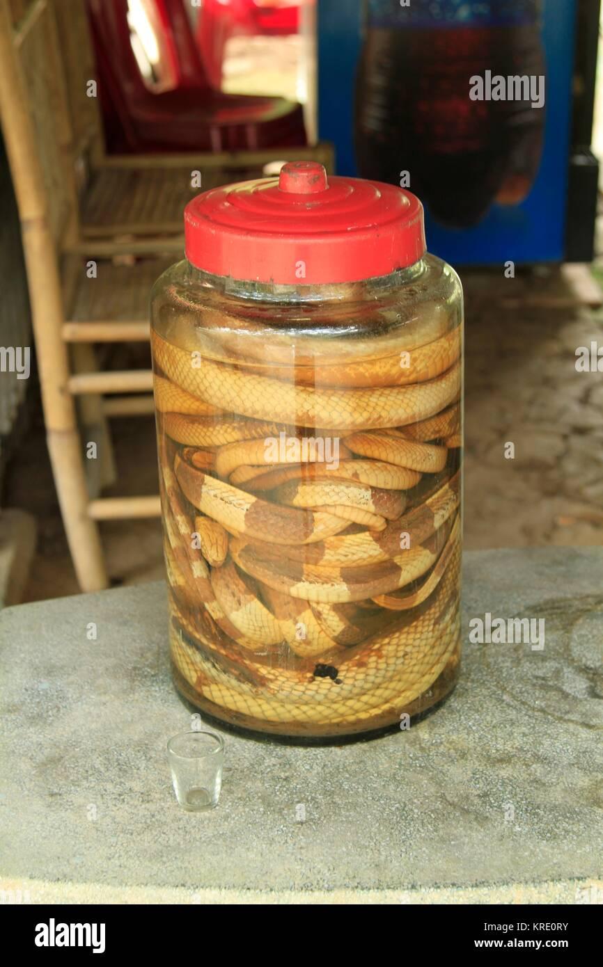 Mekong Whiskey, Rice Moonshine, Mekong Delta, Vietnam - Stock Image