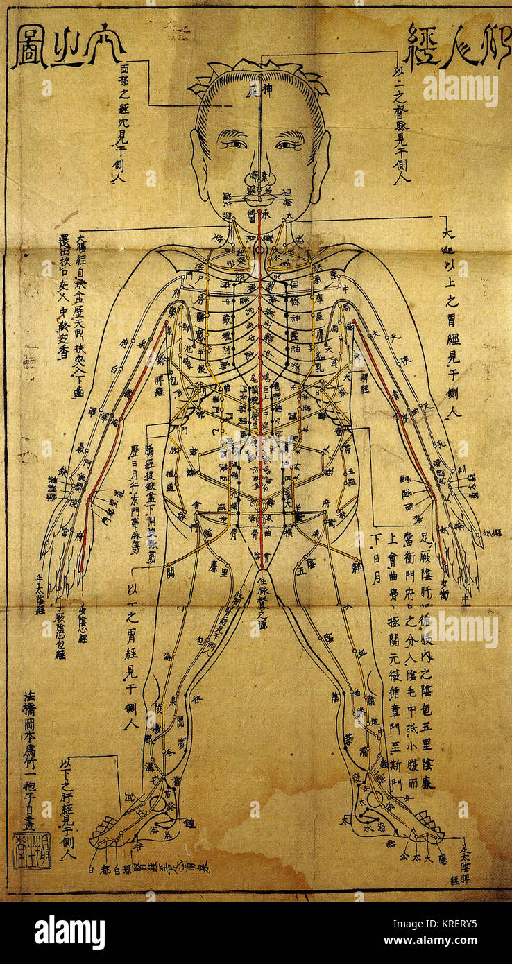 Acupuncture Chart High Resolution Stock Photography And Images Alamy