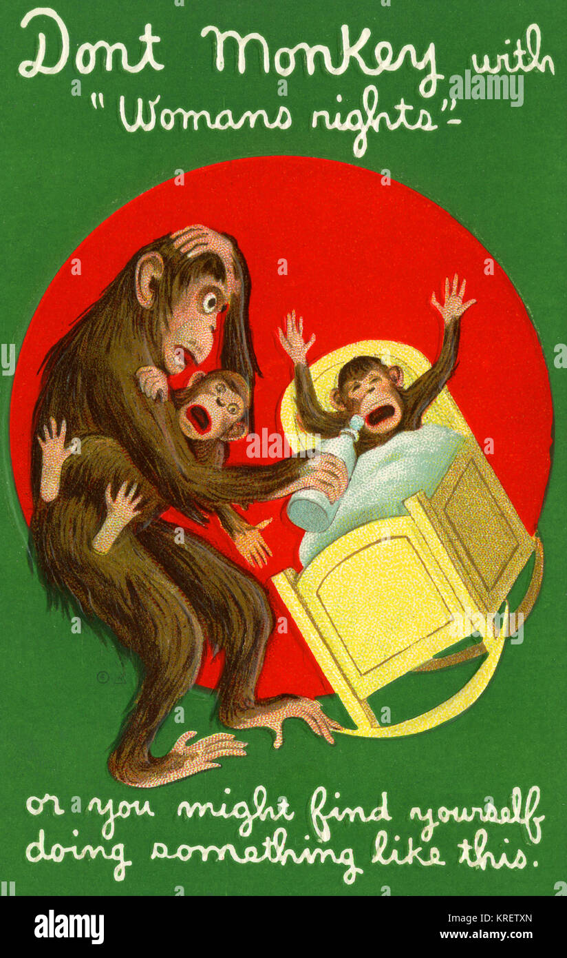 Don't Monkey With Women's Rights - Stock Image