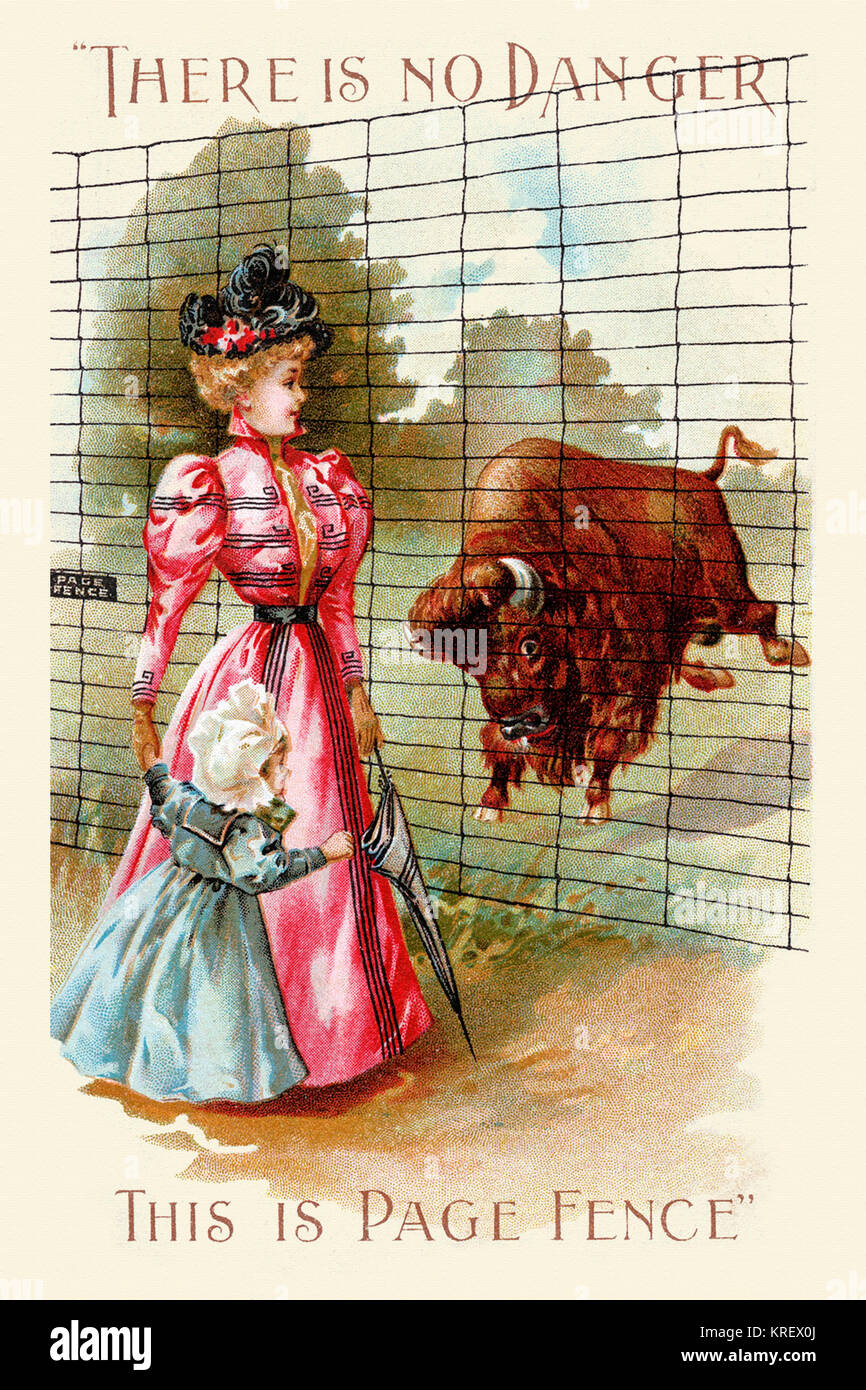 'Victorian trade card for the Page Fence.  As a buffalo or bison charges a proper lady and her daughter, she - Stock Image