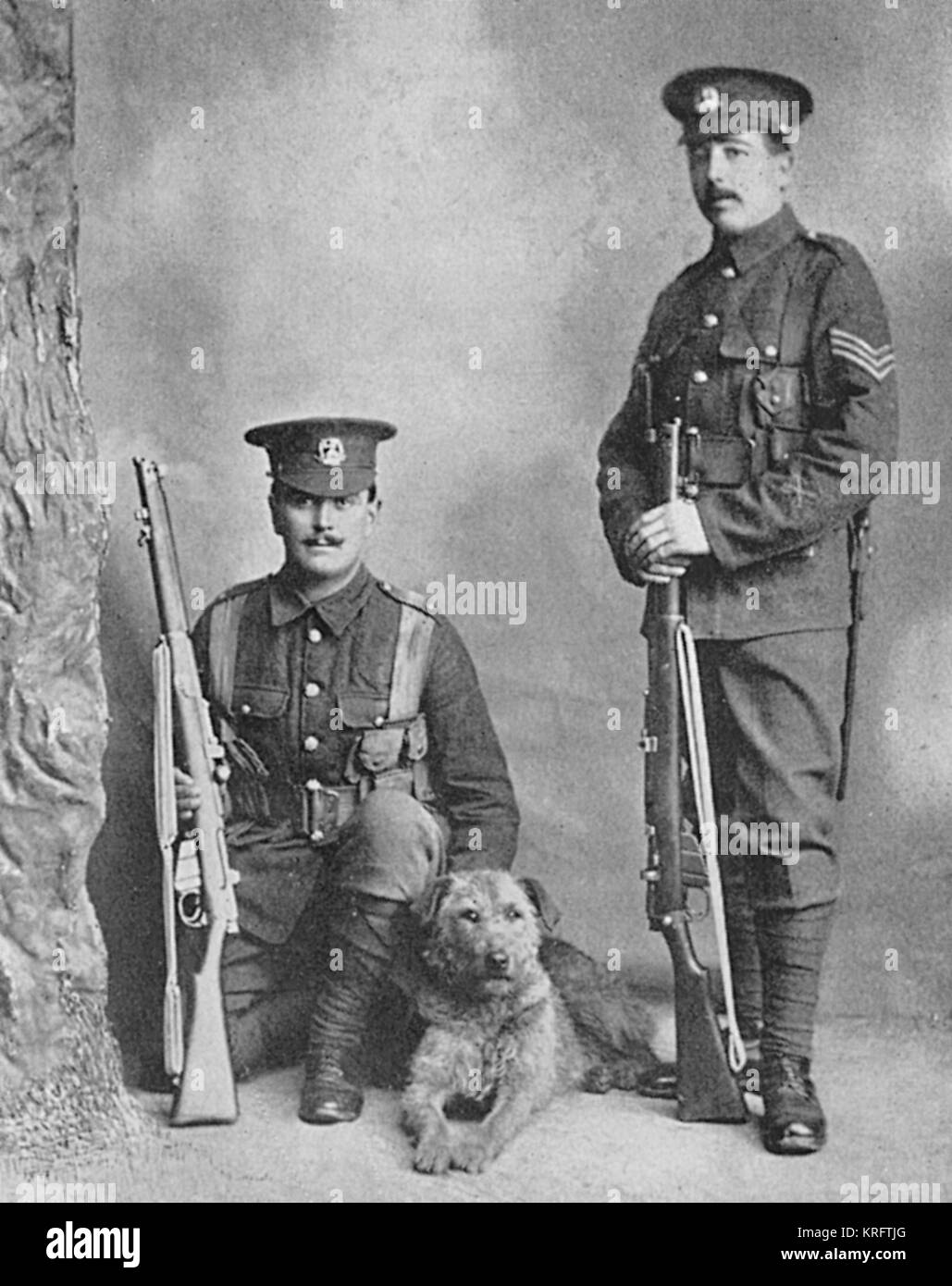 An Airedale terrier posing with two men of the Norfolk Regiment who used him as a sentry dog.  The dog was killed - Stock Image