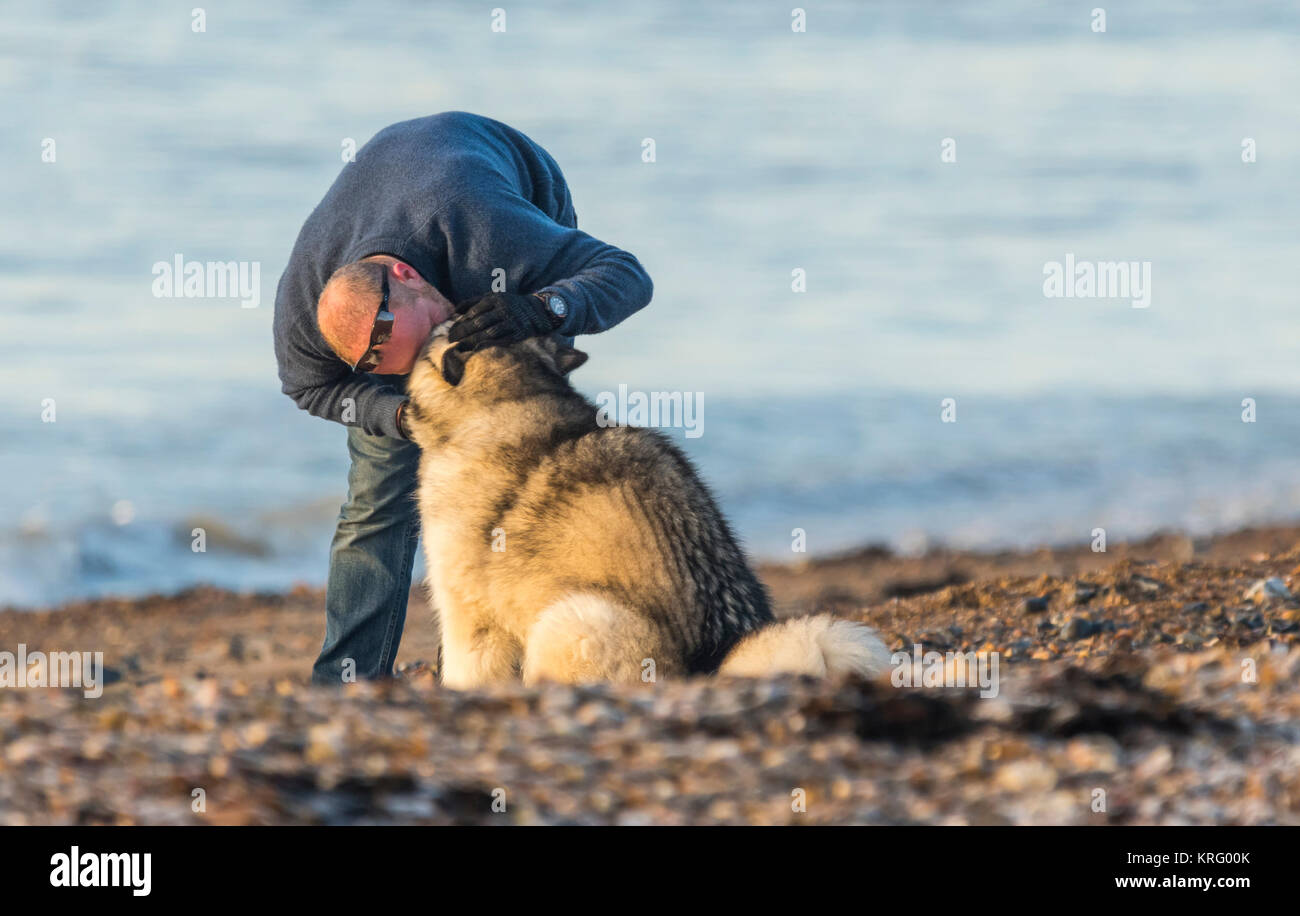 A man showing affection to a dog. Man's best friend. Companionship concept. - Stock Image
