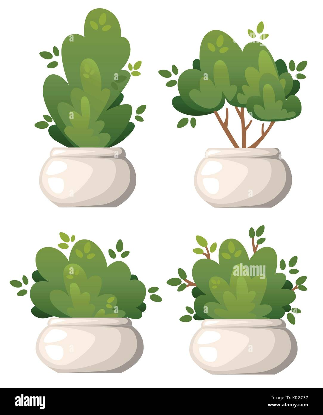Set of natural bush and garden trees in white vase for park cottage and yard vector illustration isolated on white - Stock Vector
