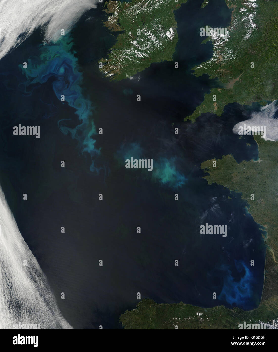 Phytoplankton Bloom in the North Atlantic Stock Photo