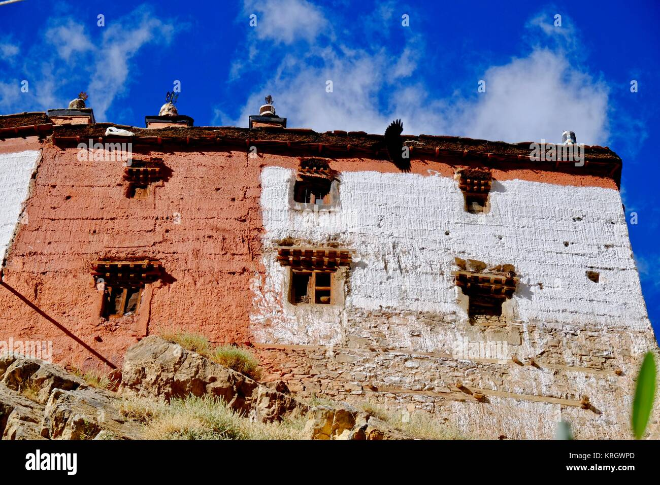 Key Gompa Stock Photos Amp Key Gompa Stock Images Alamy