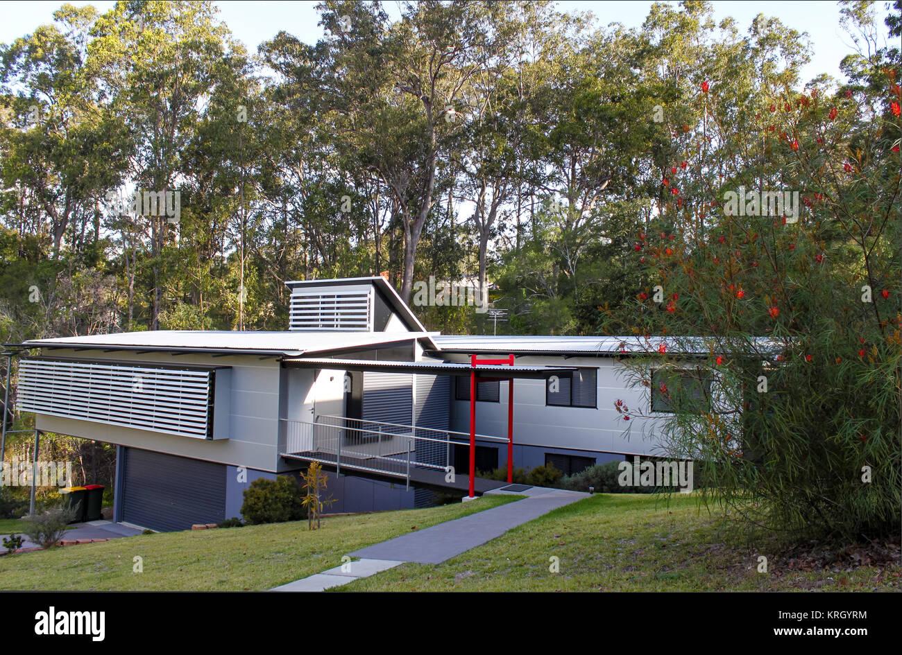 Modern style subtropical suburban home near Brisbane Australia with tall gum trees behind - Stock Image