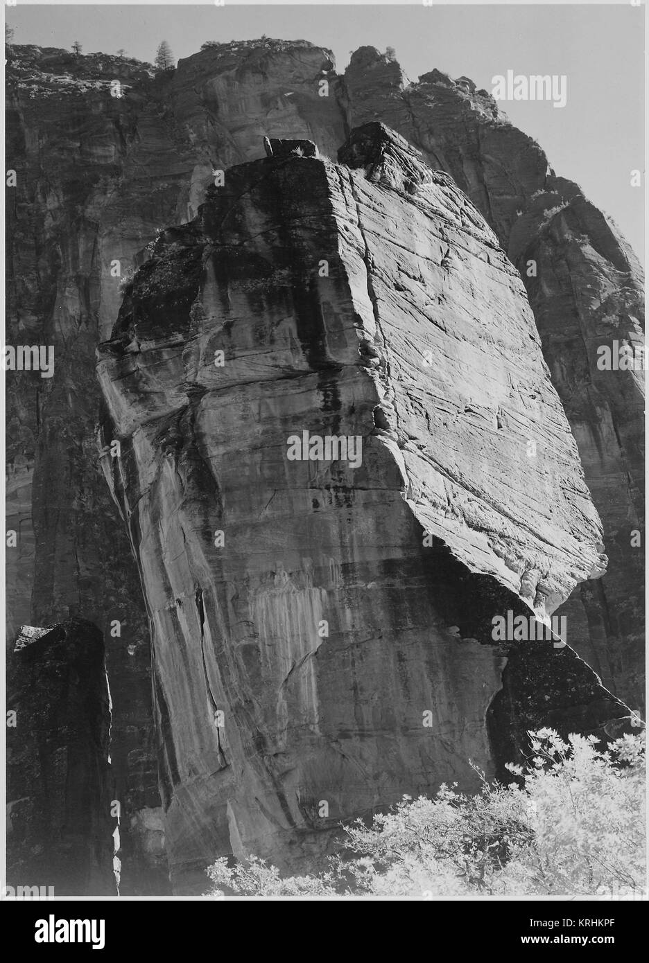 Rock formation from below 'In Zion National Park' Utah. (Vertical orientation) 1933 - 1942 - Stock Image
