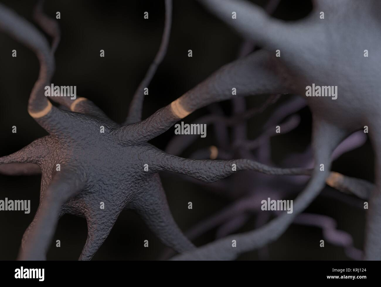 Two neurons with impulses 3d illustration Stock Photo