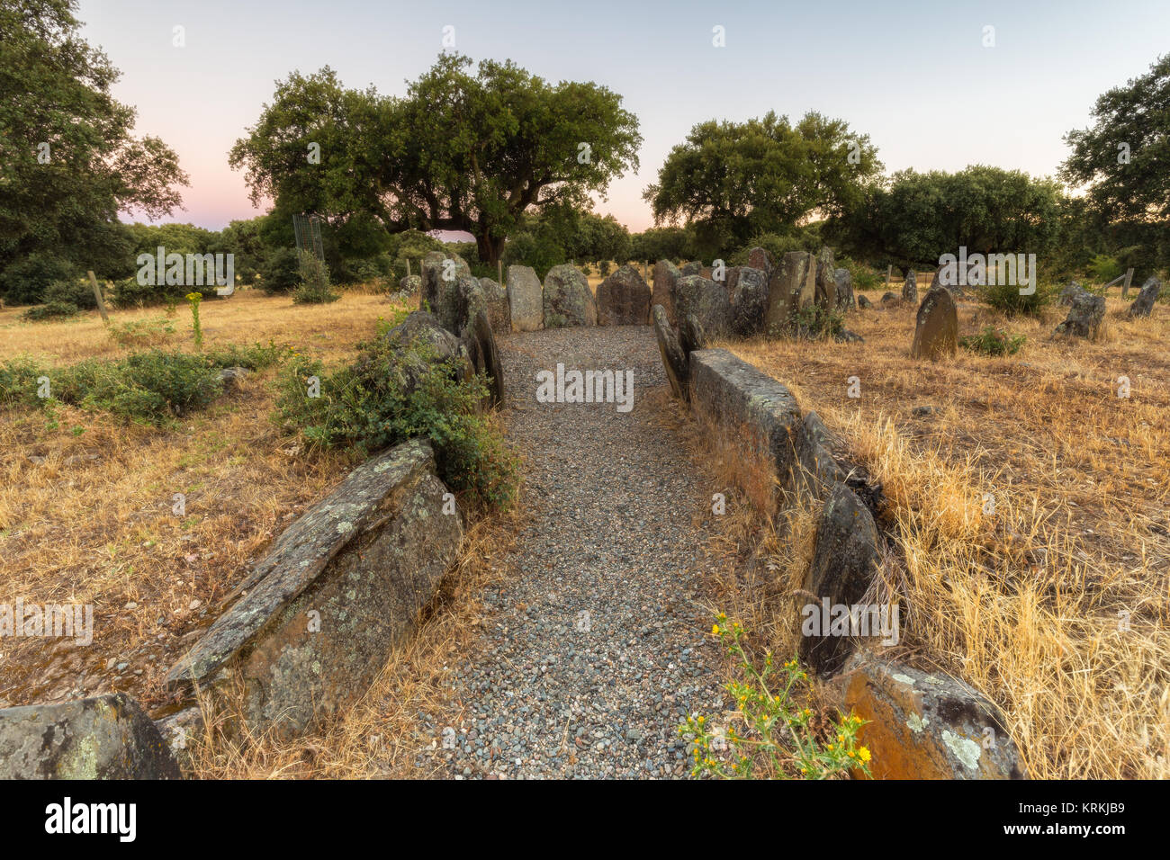 The Dolmen of the Great Oak is of type of circular chamber with long corridor. Located near Montehermoso. Extremadura. - Stock Image