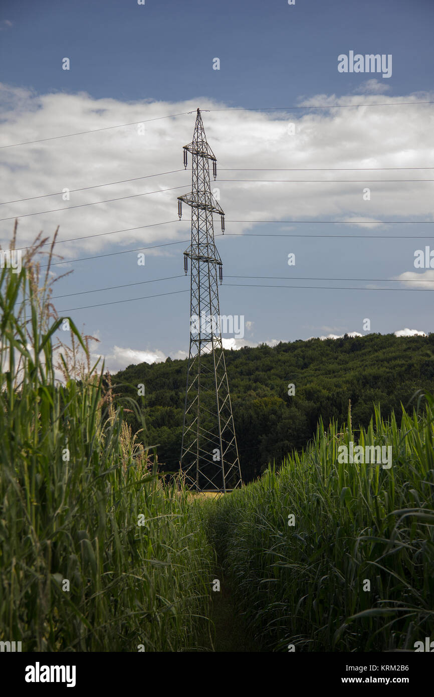electricity pylons behind cornfield with partly cloudy skies in styria - Stock Image