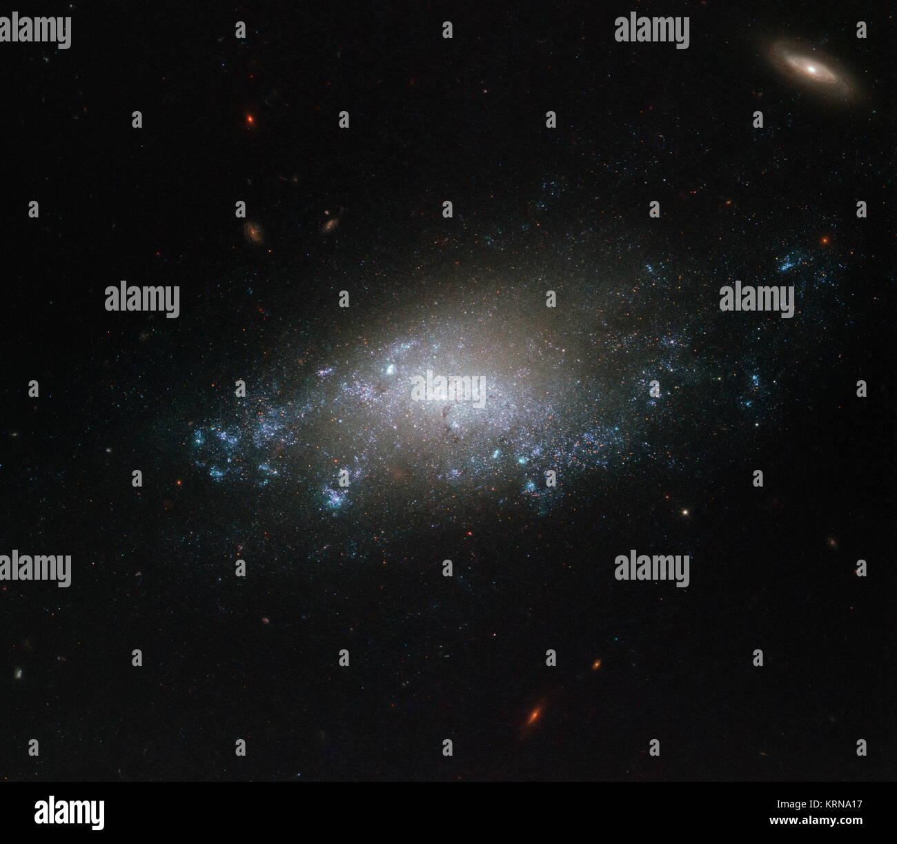 This image of the spiral galaxy NGC 3274 comes courtesy of the NASA/ESA Hubble Space Telescope's Wide Field Camera - Stock Image