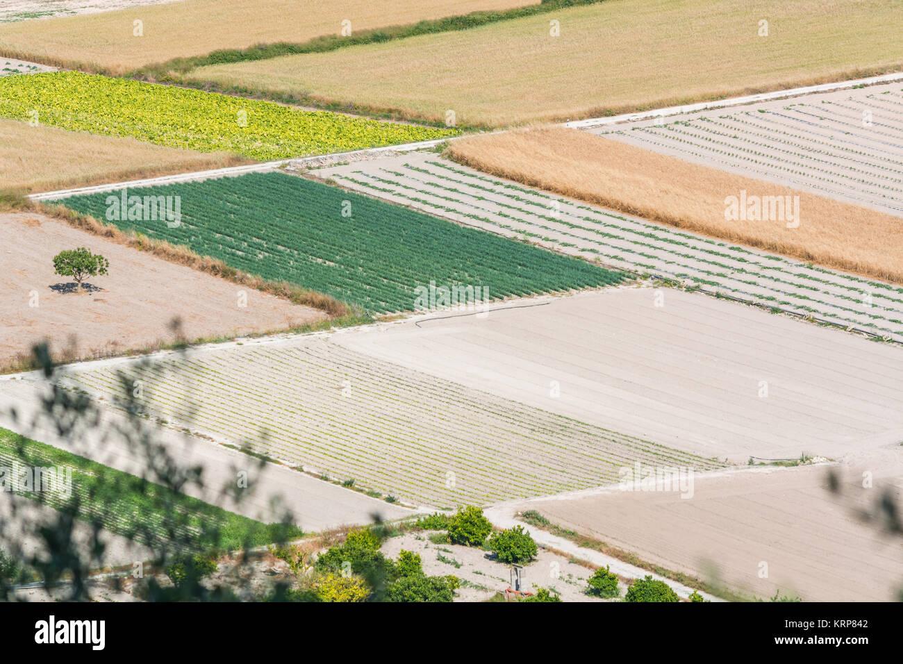 Landschaftspanorama mit kleineren Feldern, Bergen und Bäumen im Landesinnern von  Mallorca, Spanien. - Stock Image