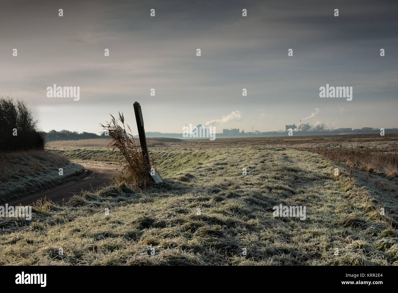 Burrows Marsh near Stalmine on the River Wyre Estuary Stock Photo