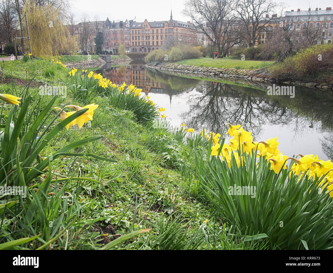 Malmö Lily Garden