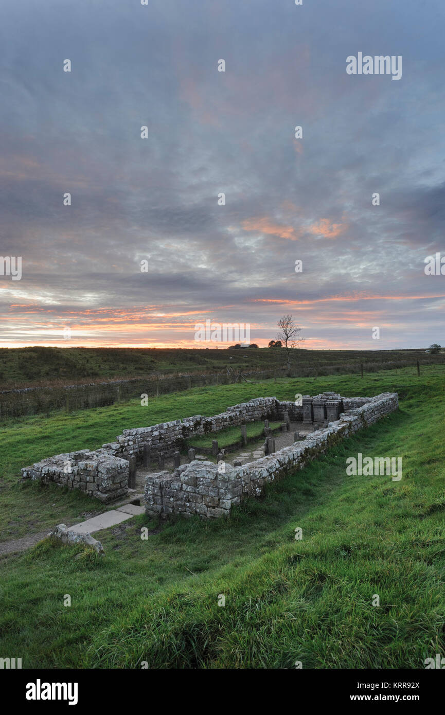 Brocolitia Temple of Mithras at Carrawburgh a Roman site along the route of Hadrian's Wall in Northumberland - Stock Image