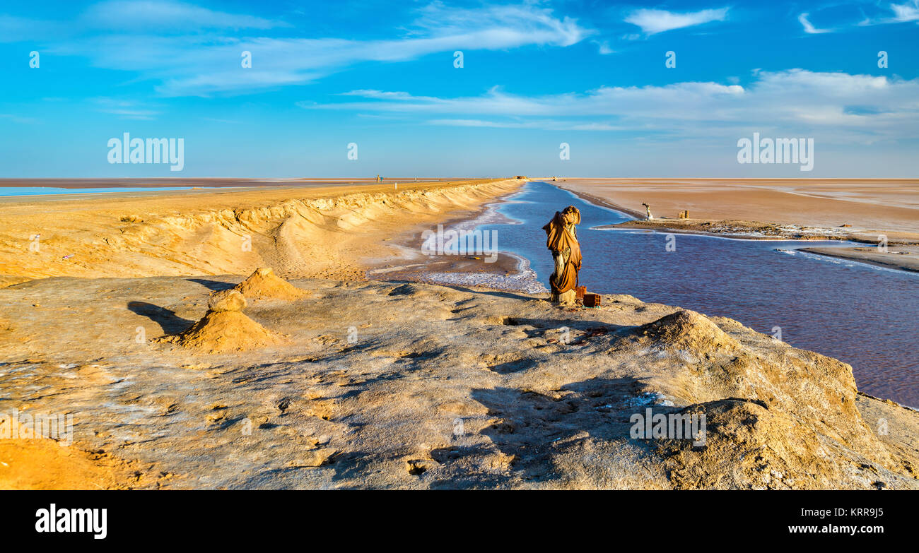 Chott el Djerid, an endorheic salt lake in Tunisia Stock Photo