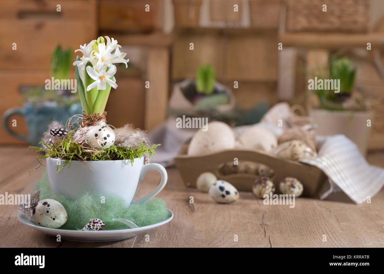 Delicate white pearl hyacinth on vintage kitchen. Happy Easter! - Stock Image
