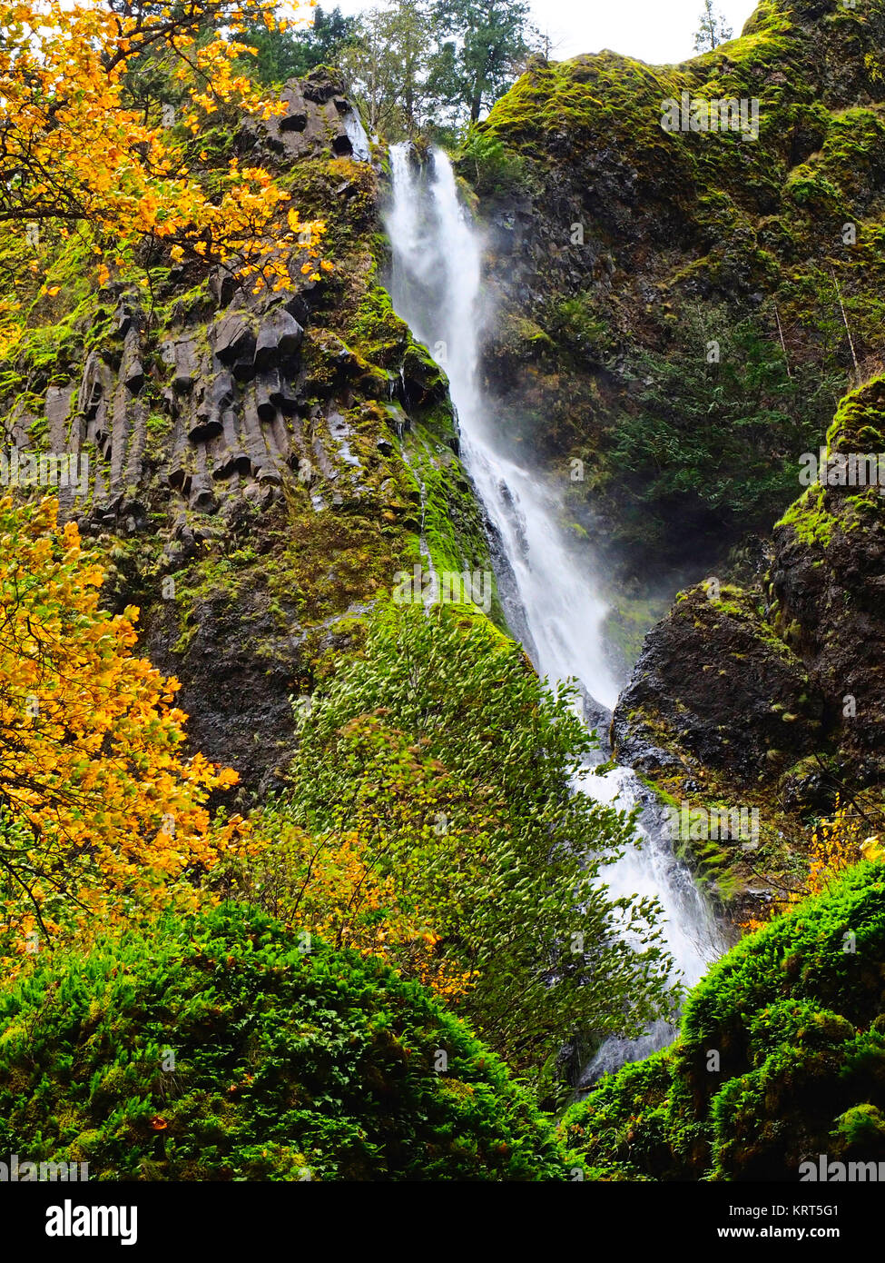 Waterfall at Oregon's Starvation Creek State Park in autumn. - Stock Image